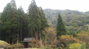 daichizenji.JPG